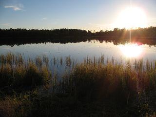 Lakjärvi